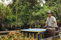 In the Floating market_Mekong river (ivy......) Tags: travel people river nikon market vietnam mekong floatingmarket d5000 nikond5000