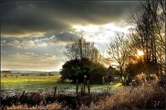 Soleil couchant sur la plaine (JL) Tags: sunset soleil coucher nuage couchant cabane bosquet plaine gunes