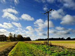 Track at Worting Wood Farm, England, UK (Beardy Vulcan) Tags: wood november autumn england sky fall field clouds track farm hampshire pole 2012 electricpole rightofway worting wortingwoodfarm