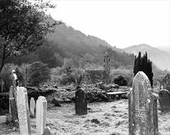 Glendalough / Gleann Dá Locha (soilse) Tags: 120 120film 120rollfilm 2013 cowicklow gleanndálocha glendalough iso150 ilford ilfordpanf january2013 japan lowerlake mediumformatcamera pentax105mm pentax105mmlens pentax67ii analoguephotography backtothefuture bignegative blackandwhite branches early f56 film filmcamera filmphotography frost frosty frostymorning grass graves gravestones graveyard hills landscape mediumformat mediumformatfilm mist misty monochrome morning negative oldchurch ponder pondered processing rollfilm ruralwicklow rurallandscape silverbirch slowphotography stonebuilding stonechurch traditionalphotography trees winter winterscene winterweather woods yewtree ancientmonasticsettlement monasticsettlement irishmonasticsettlement pentaxlife