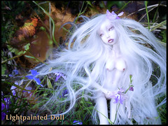 Porcelain and resin BJD- Lightpainted Doll (cureilona of Lightpainted Doll) Tags: sculpture art ball miniature doll artist unique ooak bisque tiny figure bjd resin custom collectors figurine uncanny ilona porcelain articulated figurative miniatura collectable puppe porzellan sculpt poupe miniatur lalka balljointeddoll poupes  lightpainted   scultping snul lalki   knstlerpuppe cureilona articules    mingajo   mingajo  kugelgelenkpuppe poupedauteur