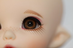Pukifee Ante eyes (athenaisdoll) Tags: eye face make up factory skin ns makeup plate faceplate bjd normal fairyland default