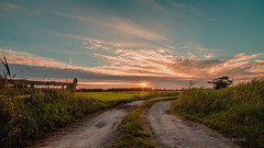Pad naar de zonsondergang - Path towards the sunset (Reina Smallenbroek) Tags: sunset netherlands canon fence landscape zonsondergang path pad drenthe hek leekstermeergebied onlanden samyang14mmf28ifedumcaspherical reinasmallenbroek