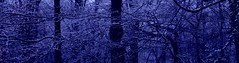 a dark day in munich.... (margeois) Tags: abstract blue munichtribute darkness