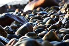 rolling stones (heuwieser) Tags: nikon bokeh steine shore ufer kiesel d7200
