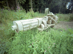 """""""The Bruiser"""" explores Alloway (wheehamx) Tags: bruiser wide angle plastic lens alloway"""