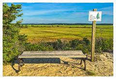 The Dennis Conservation Trust (Timothy Valentine) Tags: large bench 0816 2016 monday dennis massachusetts unitedstates us