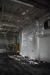 Lit Roof Holes (dakotatylerd) Tags: abandoned ohio boards garbage bricks factory daytime middletown forgotten nikon d7200 exploring