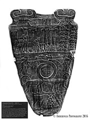 Narmer Palette - Side 2 (Amberinsea Photography) Tags: narmer narmerpalette cairomuseum cairo egyptianmuseum egypt kingnarmer amberinseaphotography ancientegypt ancientegyptianculture dynasty earlydynastic