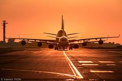 Siblings (vy.photographe) Tags: lfpo ory orly aroport leverdesoleil sunrise contrejour soleil lumiredor goldenlight avion aronef aronautique boeing b737 b747 747 737 gomtrie