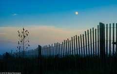 BeachFenceMoon (Zzzzt!Zzzzt!) Tags: beach rehobothbeach fence moon dusk