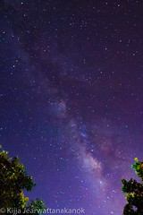 A night with the white elephant path (kijjajearwattanakanok) Tags: astrophotography night nightscape astrology thailand milkyway