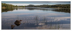 Loch Achray, The Trossachs (Pat's Images) Tags: reflections sunny lochachray trossachs earlyautumn