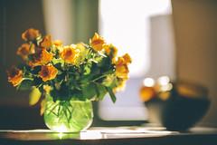 amsterdam window light. (kvdl) Tags: nieuwendammerdijk windowlight kvdl vsco flowers roses cutflowers canonef85mmf12liiusm july table