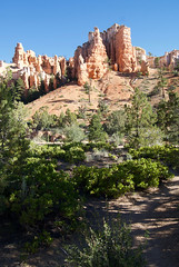 Mossy Cave Trail (nick.amoscato) Tags: west03 west03bryce mossy cave trail bryce national park utah