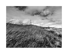 The Summit (Missy Jussy) Tags: cromptonmoor moors shaw oldham manchester landscape lancashire summit satalite pylons grass fields sky walkinglandscape mono monochrome blackwhite bw blackandwhite wind autumn canon canonpowershotsx60