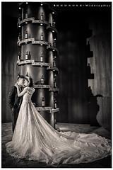 () Tags:          stimage stanley  rednose     wedding                   711