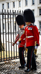 At the Barracks (littlestschnauzer) Tags: foot guard guards wellington barracks london uk changing parade marching uniform bearskin red black military army soldiers soldier 2016 summer