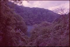(bensn) Tags: pentax mzs fa 35mm f2 film slide kodak ektachromep1600x japan mountains water lake trees gunma at400