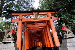 Fushimi Inari Taisha XVIII (Douguerreotype) Tags: shrine temple buddhist kyoto gate torii red japan fox statue