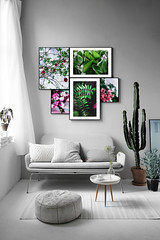 Botanical Series30 (Elena Picart) Tags: elenapavlova floralartprint interiors modern minimal flowerphotographs floralart botanicalprint flowerphotography garden spring decor naturedecor blossoms picargallery