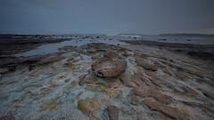 Long Reef Sunrise 14 (RoosterMan64) Tags: longexposure longreef seascape landscape leefilters australia rockshelf rocks clouds