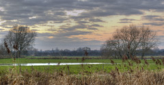 Staffordshire Countryside (jedlangdon) Tags: morning trees sky sun water field clouds countryside nikon flood fields staffordshire nikond3100