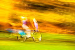 Speed (Steve-h) Tags: park pink blue ireland winter dublin abstract green art tourism grass leaves bicycle speed eos gold design movement europe december cyclist purple action wheels tourists handheld recreation breakingthelaw aerlingus allrightsreserved 2012 spotmetering aperturepriority steveh