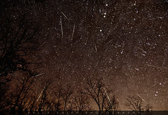 Geminids meteor shower 2012 (KellyShipp) Tags: longexposure sky favorite night stars shower nikon space awesome science arkansas meteor fallingstar nikonflickraward