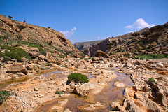 Socotra, Yemen (NeSlaB .) Tags: ocean travel panorama colors beauty canon landscape photo asia paradise view pacific country photojournalism yemen developingcountries reportage nationalgeographic dragonblood socotra soqotra hadibo suqutra hadiboh neslab