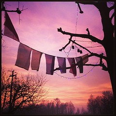 Pink sunset! #sunset #pink #flags #xmas (Elena Martinello) Tags: square squareformat iphoneography instagramapp uploaded:by=instagram gettyimagesitalyq1 gettyimagesitalyq2 gettyimagesitalyq3