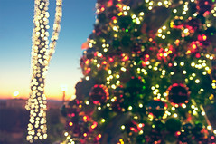 Merry & Bright (pixelmama) Tags: california sunset blur lights bokeh palmtree christmaseve celebrate sealbeach intentionally merrybright pixelmama