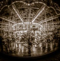 "King Arthur Carrousel | Fantasyland | Disneyland • <a style=""font-size:0.8em;"" href=""http://www.flickr.com/photos/85864407@N08/8304604349/"" target=""_blank"">View on Flickr</a>"