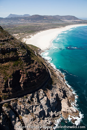 Table Mountain National Park - South Africa