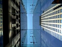 Looking up the glass verandah