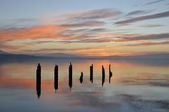 Lac Léman (joménager) Tags: couchédesoleil crépuscule lacléman nuit poselongue