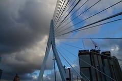 DSC00179 (Jan Lelieveldt) Tags: skyline rotterdam brug maas zwaan brienenoord nieuwjaarsdag 112013