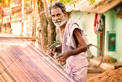 Weaver and his warp (msankar4) Tags: usa india portland or silk warp cotton weaver sari tamilnadu loom threads handloom kancheepuram me2youphotographylevel1 kancheepuramsilk