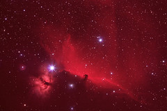 Flame and Horsehead Nebulae (gainesp2003) Tags: sky night stars space science flame telescope nebula astrophotography orion astronomy horsehead nebulae hydrogenalphafilter emissionnebula
