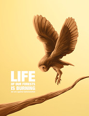 WOOD LIFE  (Wilson Cceres ) Tags: wood illustration colombia owl ilustracion wolm