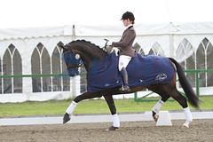 IMG_0803 (RPG PHOTOGRAPHY) Tags: final awards hickstead 5y 200712