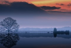 Severn river banks (Eric Goncalves) Tags: winter sunset cold color tree night clouds landscape cloudy gloucestershire sunsetting array waterscape nikond7000 ericgoncalv