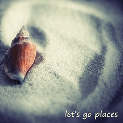 who's with me??  :-) (Morningdew Photography) Tags: blue red sea brown white toronto ontario canada black macro up canon square grey sand close purple gray navy tan cream shell seashell sq on alienskin exposure4 morningdewphotography t1i ef100l agorathefineartgallery letsgoplaces
