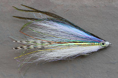 #913: Cohen's Pelagic General IMG_0012-13 (StacyN - MichiganMoments) Tags: fly fishing flies flyfishing stacyniedzwiecki matthewsupinski