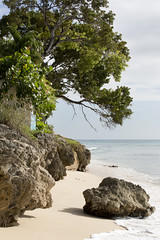 Waves Hotel Beach (Adrian Falconer) Tags: sun holiday barbados canon5dmkiii
