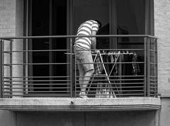 Les caleons flottent aux vents - The shorts float in the wind (p.franche malade -sick) Tags: schaerbeek schaarbeek bruxelles brussel brussels belgium belgique belge europe pfranche pascalfranche panasonic fz200 hdr dxo flickrelite skancheli monochrome noiretblanc blackandwhite zwart wit blanco negro schwarzweis  inbiancoenero   svartochvitt  mustavalkoinen  bestofbw man homme washing lessive drying schage balcony balcon urban streetshot instantan urbain city ville snapshot