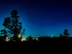 Backyard Stars (Tk_White) Tags: olympus omd em5 mark ii 12mm 20 prime stars