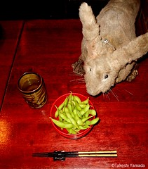 Dr. Takeshi Yamada and Seara (Coney Island Sea Rabbit) at the Sake Japanese sushi buffet restaurant in Brooklyn, NY on March 27, 2016.  20160527Fri DSCN6235=-4040pC. edamame (searabbits23) Tags: searabbit seara takeshiyamada  taxidermy roguetaxidermy mart strange cryptozoology uma ufo esp curiosities oddities globalwarming climategate dragon mermaid unicorn art artist alchemy entertainer performer famous sexy playboy bikini fashion vogue goth gothic vampire steampunk barrackobama billclinton billgates sideshow freakshow star king pop god angel celebrity genius amc immortalized tv immortalizer japanese asian mardigras tophat google yahoo bing aol cnn coneyisland brooklyn newyork leonardodavinci damienhirst jeffkoons takashimurakami vangogh pablopicasso salvadordali waltdisney donaldtrump hillaryclinton endangeredspecies save