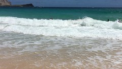 IMG_2329 (jjandames) Tags: makapuubeach hawaii oahu 2016