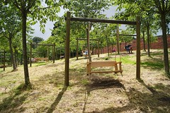 Sunshine swingers (WISEBUYS21) Tags: alnwick aln alnwickcastle gardens castle northumberland harry hostpur tottenham henry v shakespeare swingers sunshine wisebuys21 near newcastleupontyne newcastle northumbria northeast shadow casting long bathed beautiful sunlight trees grass outdoors summer time duke duchess royalty green hay rope seat sun percy family lions